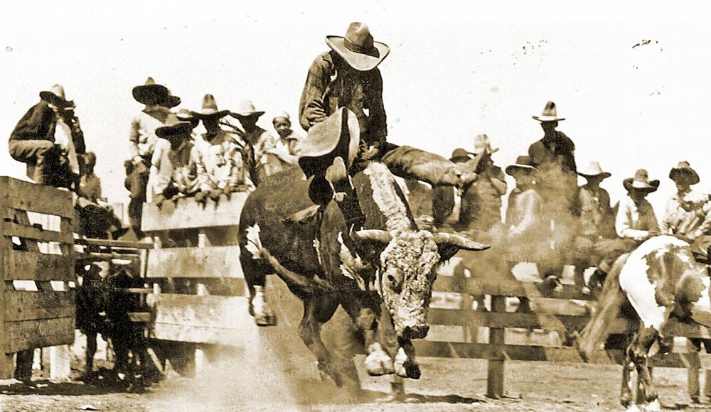 bull-rider-1930